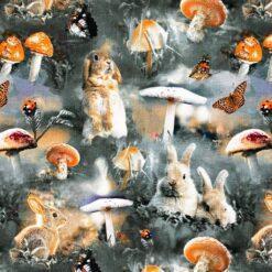 Jersey – Kaniner og skogssopp