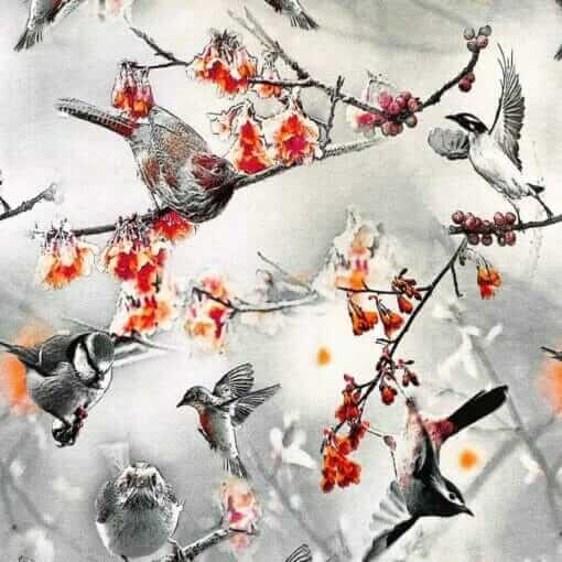 Jersey – Fuglesamling - grå