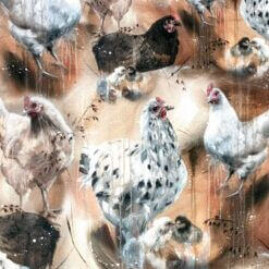 Jersey - Hen and chicken - Mainelakeus