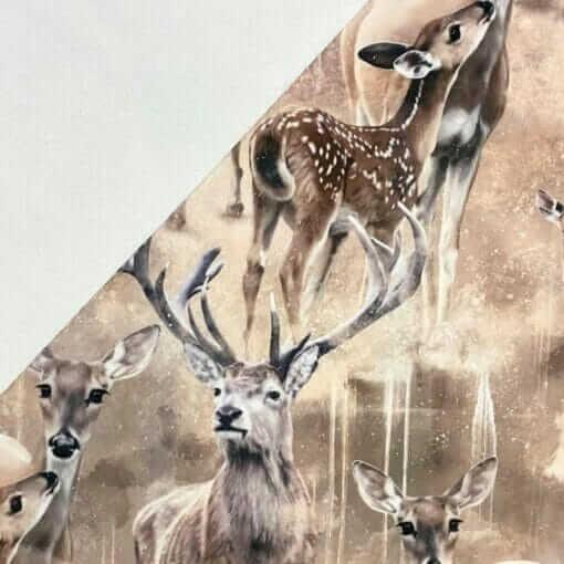 Softshell - Deerfamily - Mainelakeus